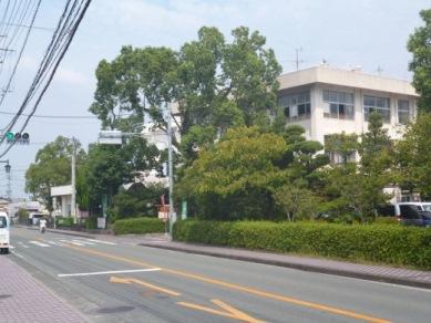 日吉小学校周辺