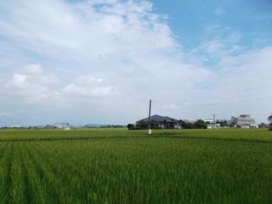 校区内の田園地帯
