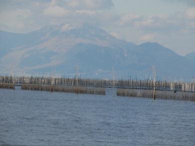 有明海沿岸の海苔の養殖