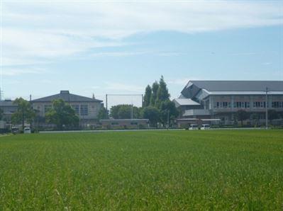 日吉東小学校周辺