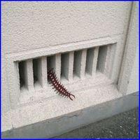 ムカデ対策のイメージ。鉄製の防虫網をすれば安心です。