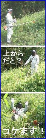 草刈機使用の写真2。上側から作業をすると草ですべってしまいます。大変危険です。