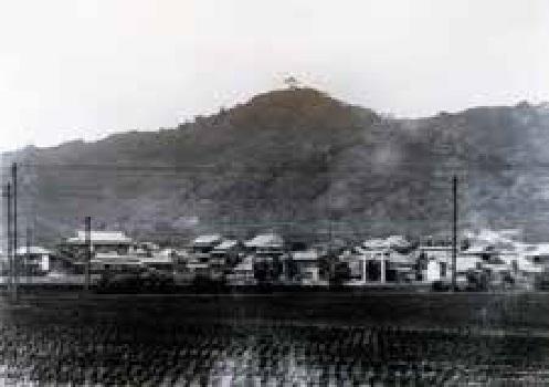 昭和初期の「天拝の松」