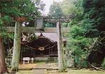 太郎迫神社の湧水
