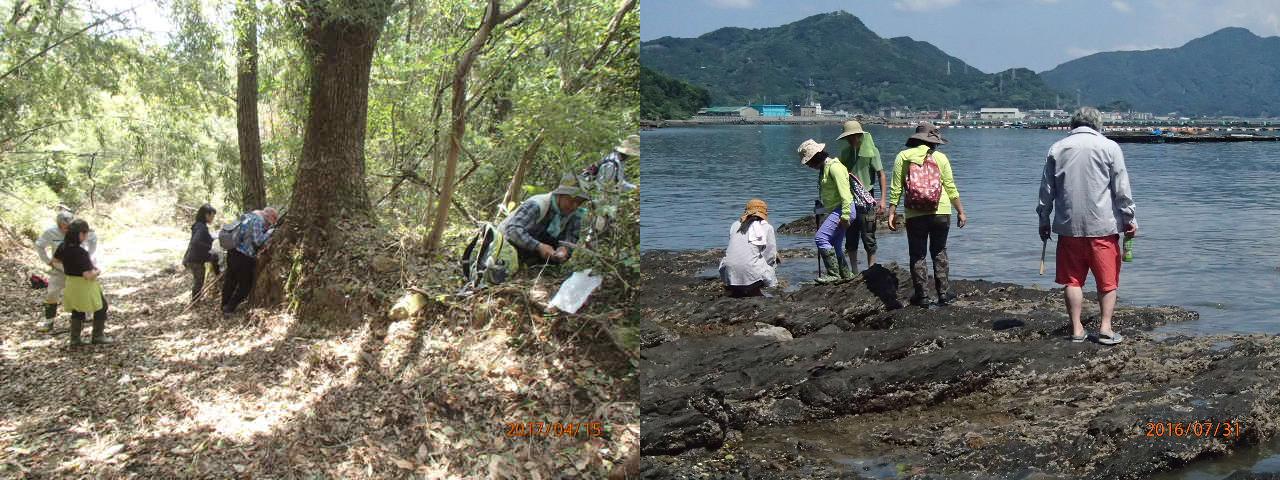 熊本県博物館ネットワークセンターミュージアムパートナーズクラブ貝類調べ隊