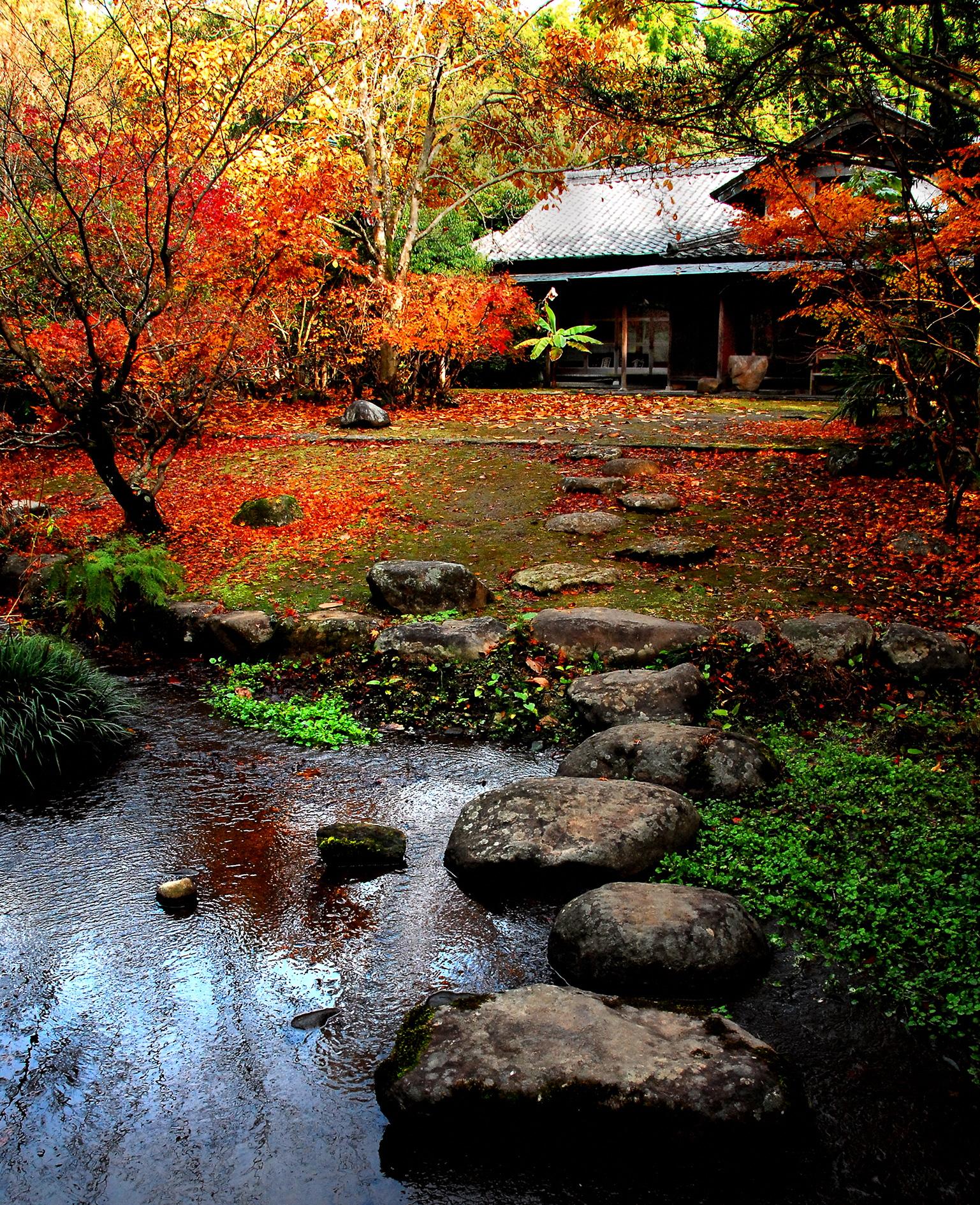 晩秋の釣耕園