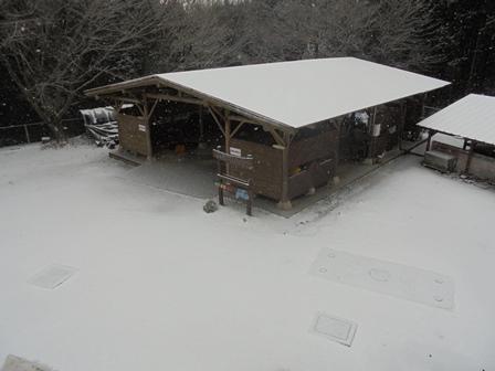 やまびこハウスも真っ白。