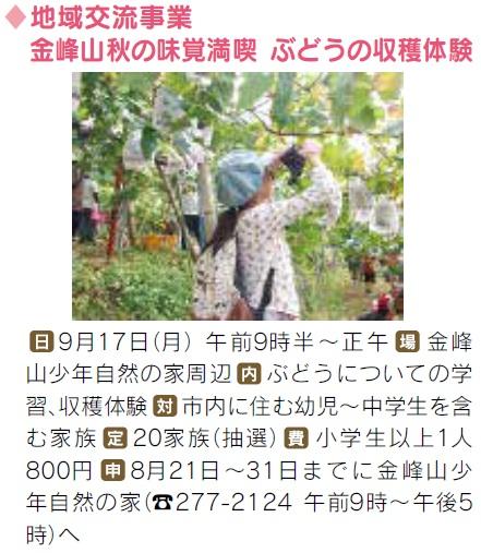 ぶどうの収穫体験