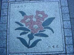 花の輪(熊本県:りんどう)