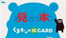 (※おでかけICカード(1)(障がい者用)の見本)