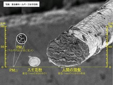 M2.5の電子顕微鏡写真