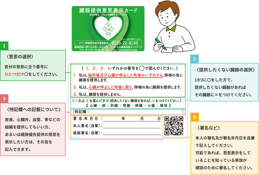 臓器提供に関する意思表示について