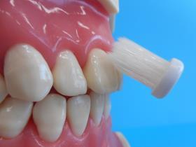歯ブラシを歯と歯肉の境目に斜め45度の角度で当てている写真