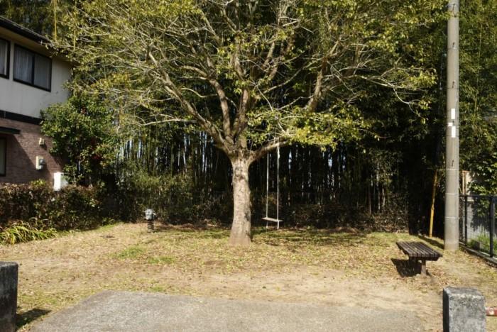 4203(田子山公園)
