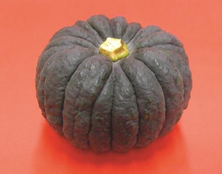 熊本黒皮かぼちゃ