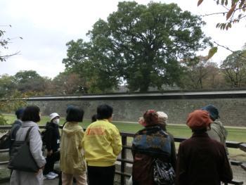 熊本城長塀前の坪井川