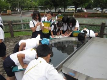 小学生学びの風景